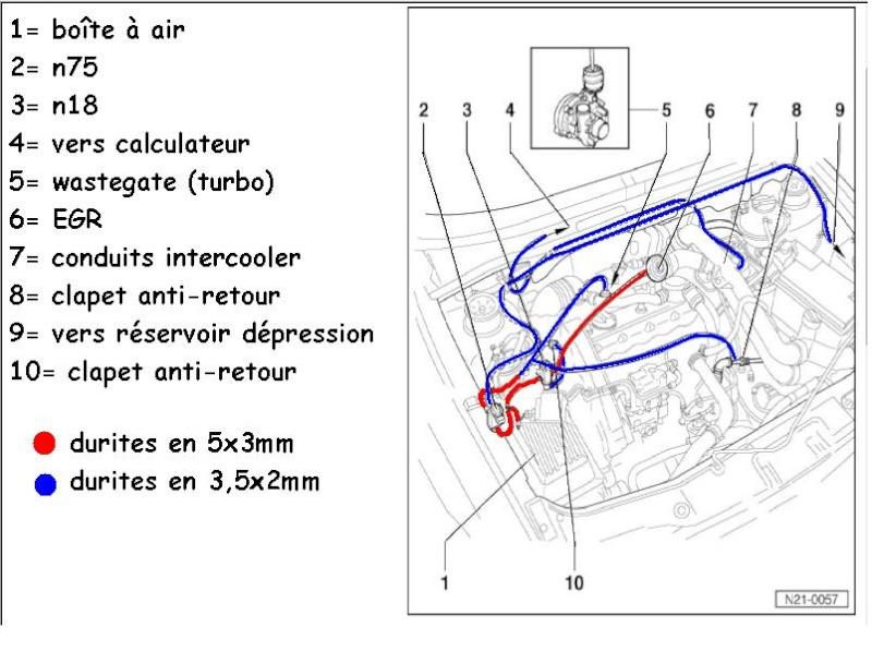 schema moteur golf 3 tdi