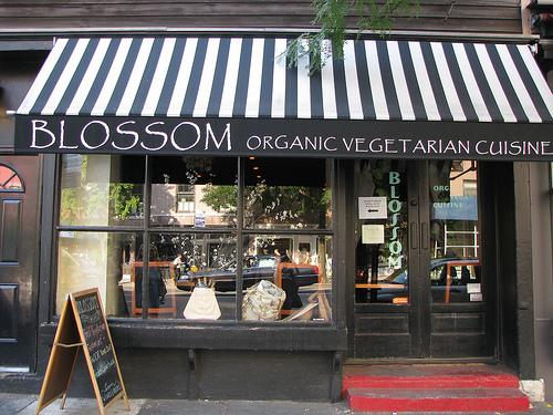 Restaurants Casher Avenue De L Op Ef Bf Bdra Paris