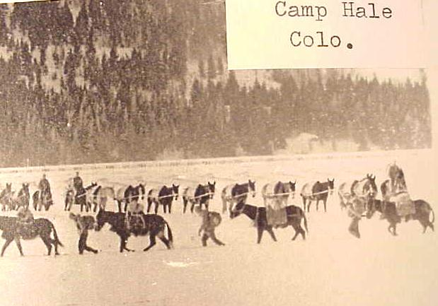 camp_h10.jpg