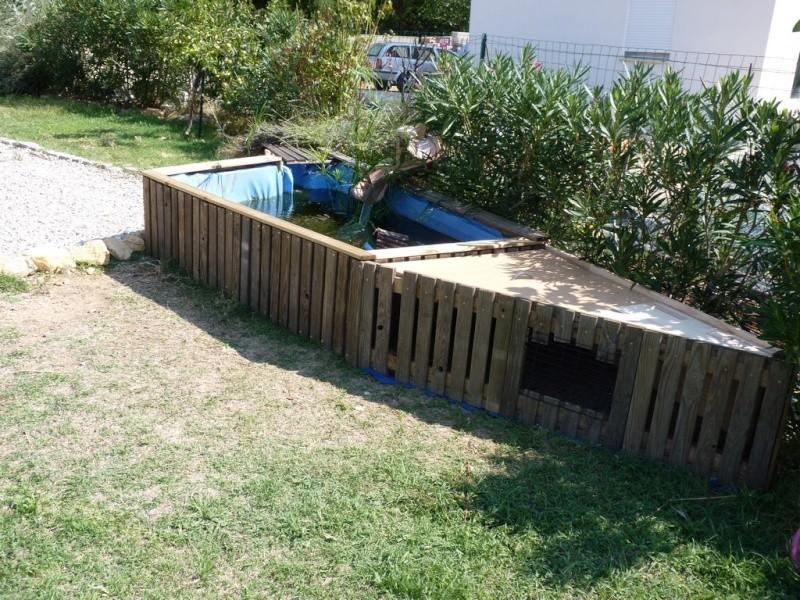 Mon nouveau bassin page 2 for Bassin exterieur pour tortue