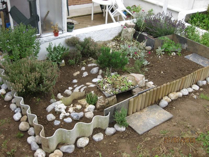 Premier parc tortues for Amenagement jardin pour tortue