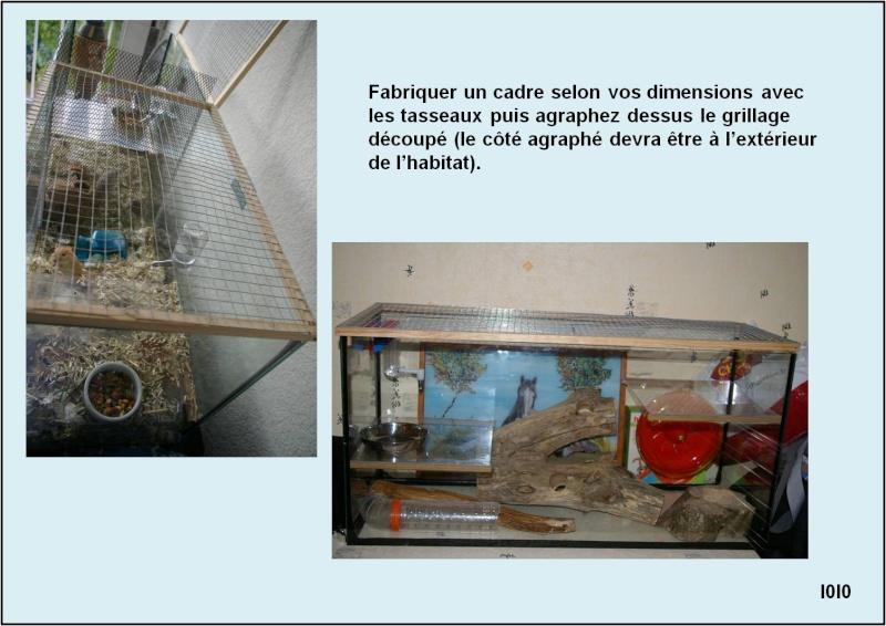 Forum les gerbilles gerbille conseil informations afficher le sujet - Fabriquer un terrarium ...
