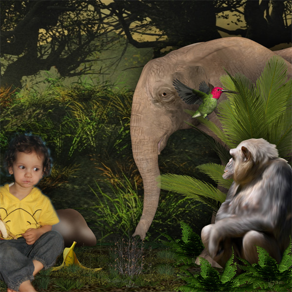 mowgli10.jpg