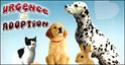 Adoption urgente