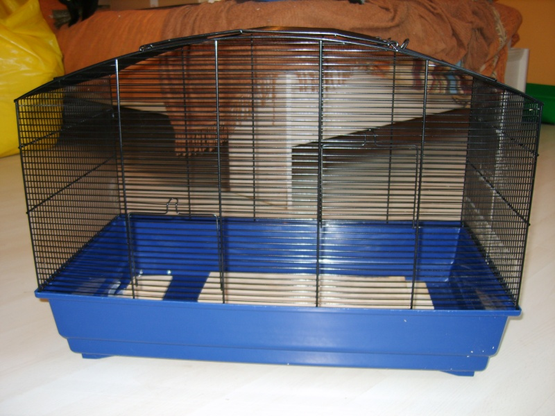 3 cages hamster souris accessoires plaques plexi. Black Bedroom Furniture Sets. Home Design Ideas