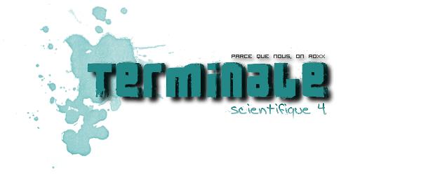 Terminales S4