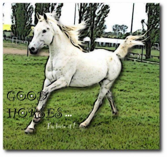 Good-Horses