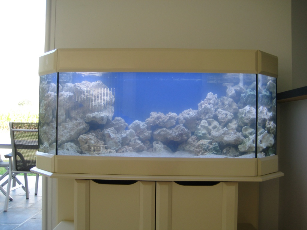d cor a plat un probl me avec votre aquarium. Black Bedroom Furniture Sets. Home Design Ideas