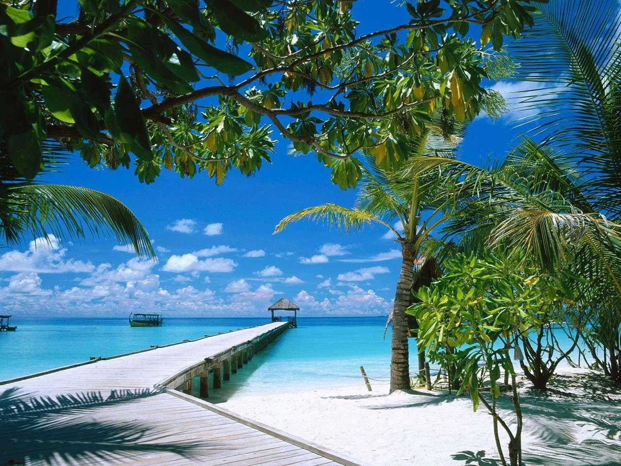 maldiv11.jpg