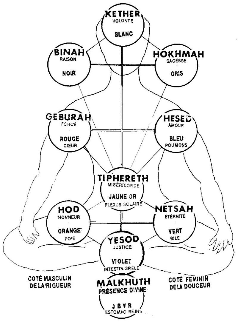 Le nombre 459 l 39 arbre de vie - Signification arbre de vie ...