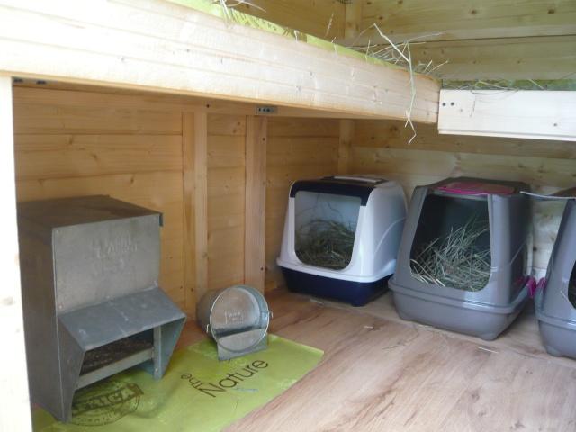 poulailler sol beton poulailler. Black Bedroom Furniture Sets. Home Design Ideas