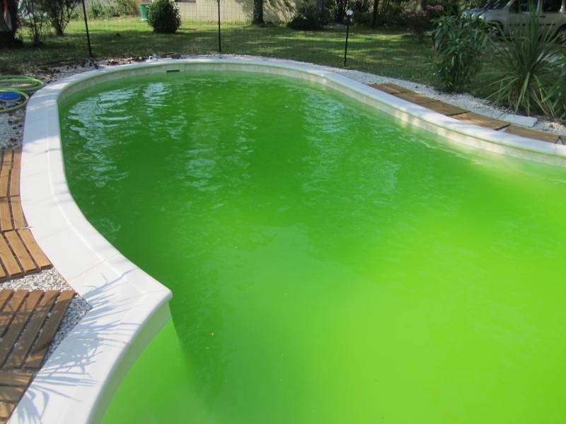 Probl me d 39 algues for Peinture pour piscine